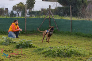 Laura_Dog_Trainer_Andrea_Trimarchi_Photographer-23